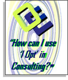 How can I use 'I-Opt' in consulting?