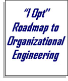 I Opt roadmap to organizational engineering