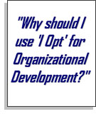 Why use IOpt for Organizational Development